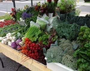 Campbellford Farmers Market, Campbellford, Trent Hills, Ontario