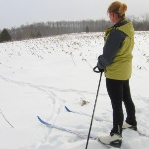 Cross Country Skiing at Ferris Provincial Park, Campbellford, Trent Hills ON