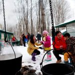 Warkworth Maple Syrup Festival