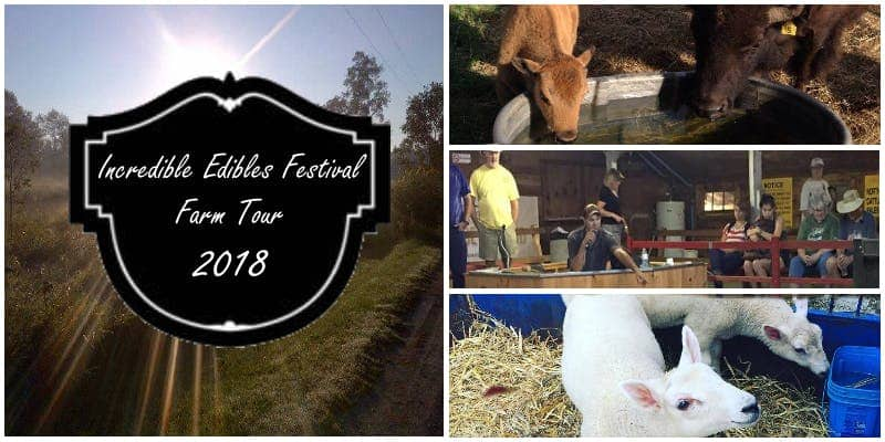 Incredible Edible Festival Farm Tour, Campbellford, Trent Hills, Northumberland County, Ontario