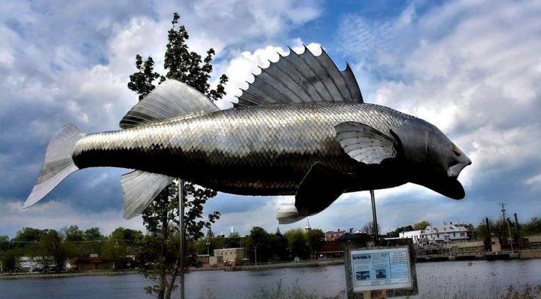 Hastings Pisces Pete